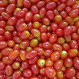 Gruppe frische rote Kirschtomaten Lizenzfreies Stockfoto