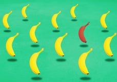 Gruppe gelbe Bananen mit einem Rot schweben in einer Luft frei stockfotografie