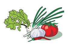 Gruppe Gemüse Stockfoto