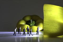 Gruppe Geschäfts-Figürchen gehen in Richtung zu einem beleuchteten gelben Pfeffer stockbilder