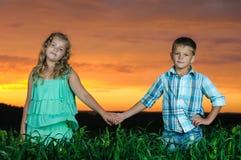 Gruppe glückliche Kinder, die auf Wiese spielen stockfotos