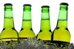 Gruppe grüne Bierflaschen lizenzfreie stockfotografie