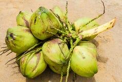 Gruppe grüne Kokosnüsse Stockfotos