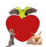 Gruppe Haustiere zusammen mit großem rotem Herzen Raum für Text Getrennt Lizenzfreie Stockfotos