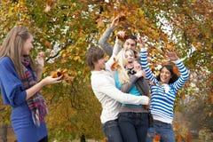 Gruppe Jugendfreunde, die Blätter im Herbst werfen Stockfotografie