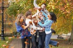 Gruppe Jugendfreunde, die Blätter werfen Lizenzfreies Stockfoto