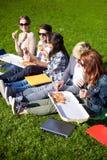 Gruppe Jugendstudenten, die Pizza auf Gras essen Stockfotografie
