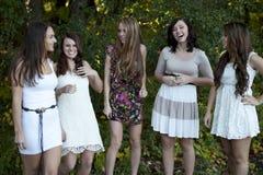 Gruppe junge Mädchen stockfotos