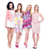 Gruppe junge schöne glückliche Frauen lizenzfreie stockfotos
