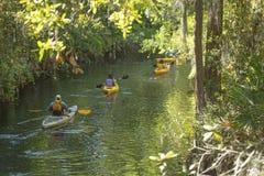Gruppe Kayakers auf Schindel-Nebenfluss in Kissimmee, Florida lizenzfreies stockfoto