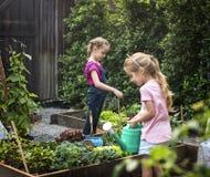 Gruppe Kindergartenkinder, die draußen im Garten arbeiten lernen stockbilder