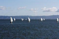 Gruppe kleine Segelboote auf San Francisco Bay Stockfotos