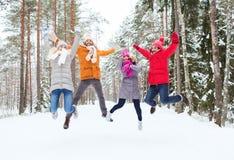 Gruppe lächelnde Männer und Frauen im Winterwald stockbild