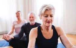 Gruppe ?ltere Leute, die Yoga?bung im Einkaufszentrumsclub tun stockbild