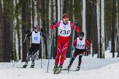 Gruppe männliche Athleten der Skifahrer, die durch Holz laufen Stockfotografie