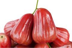 Gruppe Malabaräpfel getrennt auf Weiß lizenzfreies stockbild