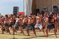 Gruppe Maori- M?nner, die traditionellen Tanz, Neuseeland tun lizenzfreie stockbilder