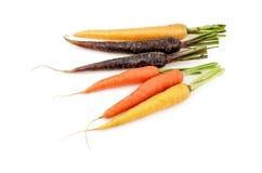 Gruppe mehrfarbige Karotten Lizenzfreie Stockbilder