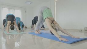 Gruppe mittlere Greisinnen mit den wirklichen Körpern, die auf einer Matte stehen und Yoga pilates tun, trainiert in einem Eignun stock video footage