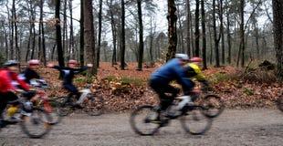 Gruppe mountainbikers im Holz, das Spaß hat lizenzfreies stockbild