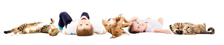 Gruppe nette Kinder und spielerische Haustiere stockfotografie