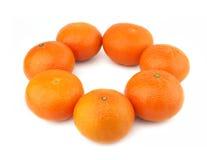 Gruppe Orangen Stockfotos