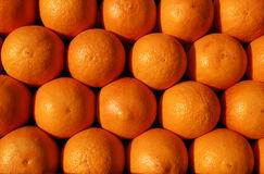 Gruppe Orangen betriebsbereit zum Juicing Lizenzfreie Stockbilder