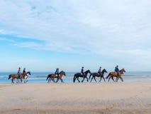 Gruppe Pferdereiter auf dem Strand stockfotos
