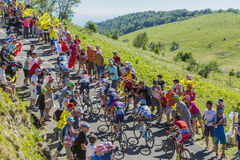 Gruppe Radfahrer auf Col. du Grand Colombier - Tour de France 201 Stockbild
