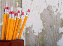 Gruppe Radiergummienden von Bleistiften im Bleistifthalter Lizenzfreies Stockfoto