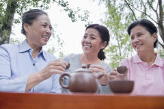 Gruppe reife Frauen, die chinesischen Tee im Park trinken Lizenzfreie Stockfotografie