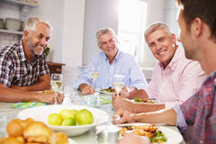 Gruppe reife männliche Freunde, die zu Hause Mahlzeit genießen lizenzfreie stockfotos