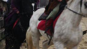 Gruppe Reiter in den mittelalterlichen Klagen, die Zucht- Pferde am Galopp, königliche Armee reiten stock footage