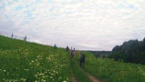 Gruppe Reiter zu Pferd, die durch das Sommerfeld galoppieren stock video footage