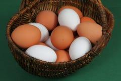 Gruppe rohe Eier Lizenzfreies Stockbild