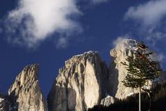 Gruppe Sassolungo Langkofel der italienischen Dolomit im Winter von Campitello di Fassa Ski Area in Canazei Lizenzfreies Stockbild