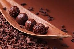Gruppe Schokolade Lizenzfreie Stockbilder