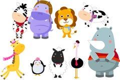 Gruppe Tiere Stockfotos