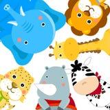 Gruppe Tiere Stockfoto