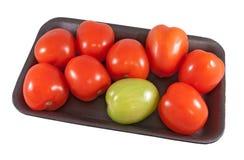 Gruppe Tomaten Lizenzfreie Stockbilder