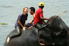 Baden mit Elefanten Lizenzfreie Stockfotos