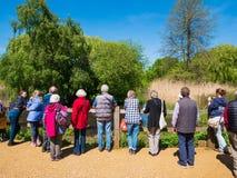 Gruppe Touristen, die Isabella-Plantage besichtigen stockbild