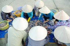 Vietnamesische Fischer stockfotos