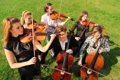 Gruppe Violinisten spielen Stellung auf Gras Stockfotos