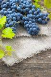 Gruppe von blauen Trauben auf altem hölzernem Hintergrund Lizenzfreie Stockfotografie