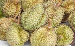 Gruppe von Durian trägt im Markt für Verkauf Früchte Lizenzfreie Stockfotos