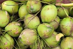 Gruppe von grünen Kokosnüssen in der Lagerung stockfotos
