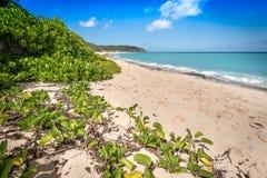 Gruppe von Personen, die auf dem Strand sich entspannt und ein Sonnenbad nimmt Stockfotos