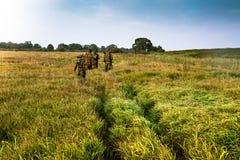 Gruppe von Personen, die in den Abstand auf einem grünen Feld mit hohem Gras während des Sonnenaufgangs einsteigt Lizenzfreie Stockbilder