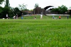 Gruppe von Personen, die im Park am sonnigen Tag spielt stockbilder